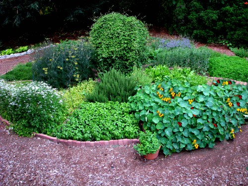Herb Garden Design Ideas Photograph | Love Apple Farms: The